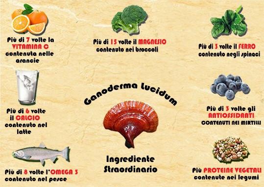 Benefici e proprietá ganoderma lucidum
